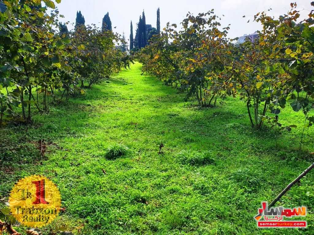 Ad Photo: Land 875 sqm in Trabzon