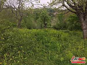 Ad Photo: Land 600 sqm in sapanga Sakarya