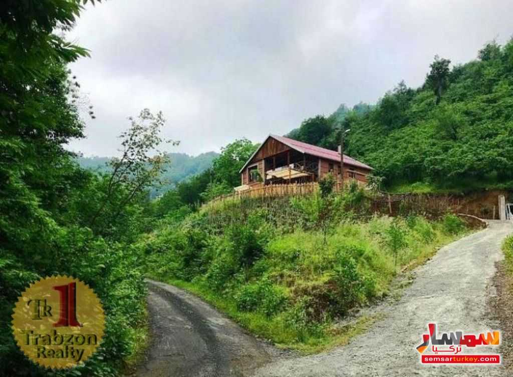 Photo 1 - Farm 4,000 sqm For Sale akchabat Trabzon