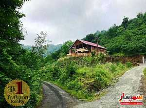 Ad Photo: Farm 4000 sqm in akchabat Trabzon