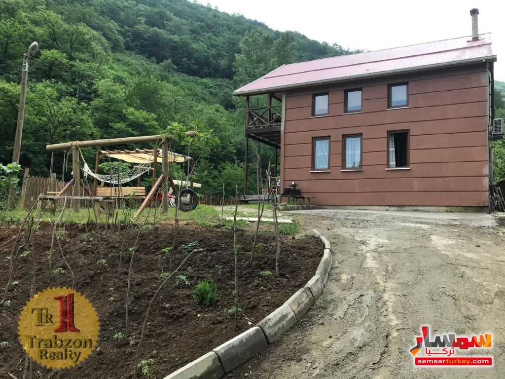 Photo 5 - Farm 4,000 sqm For Sale akchabat Trabzon