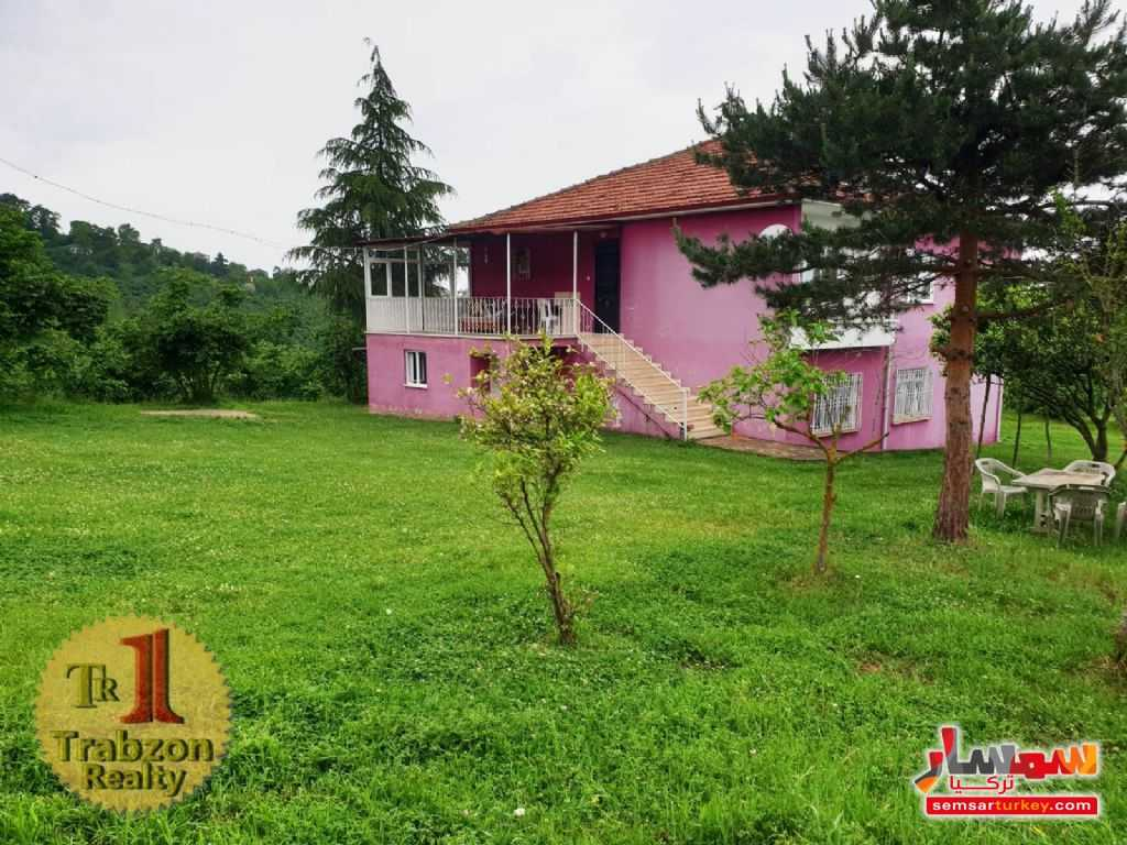 Photo 6 - Farm 13 dunam For Sale yomra Trabzon
