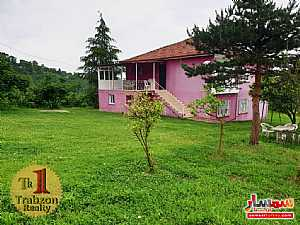 Farm 13 dunam For Sale yomra Trabzon - 6