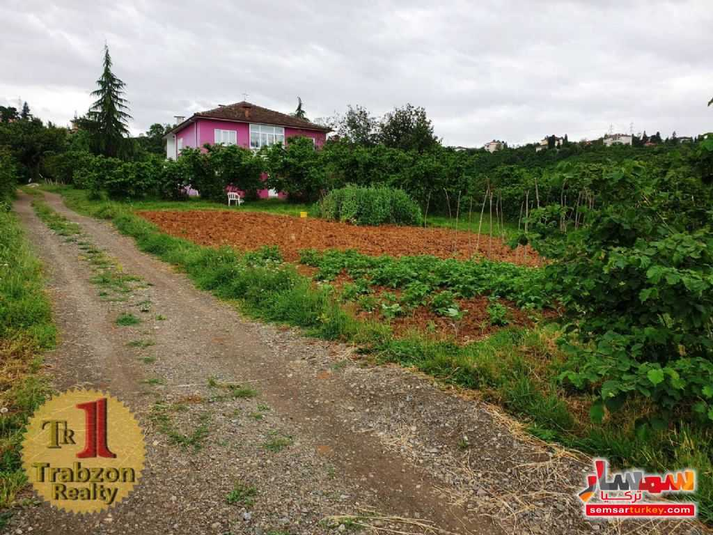 Photo 8 - Farm 13 dunam For Sale yomra Trabzon