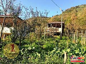 Farm 5,000 sqm For Sale maçka Trabzon - 12