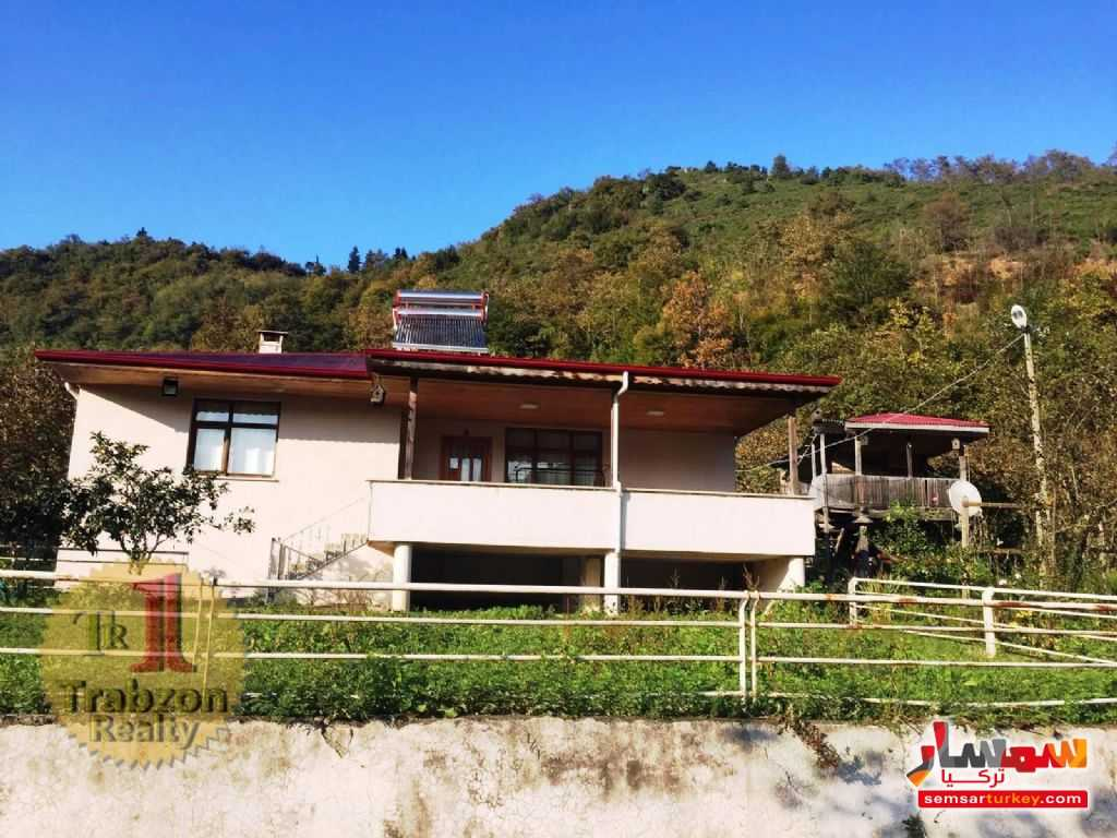 Photo 13 - Farm 5,000 sqm For Sale maçka Trabzon