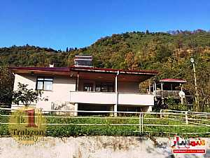 Farm 5,000 sqm For Sale maçka Trabzon - 13