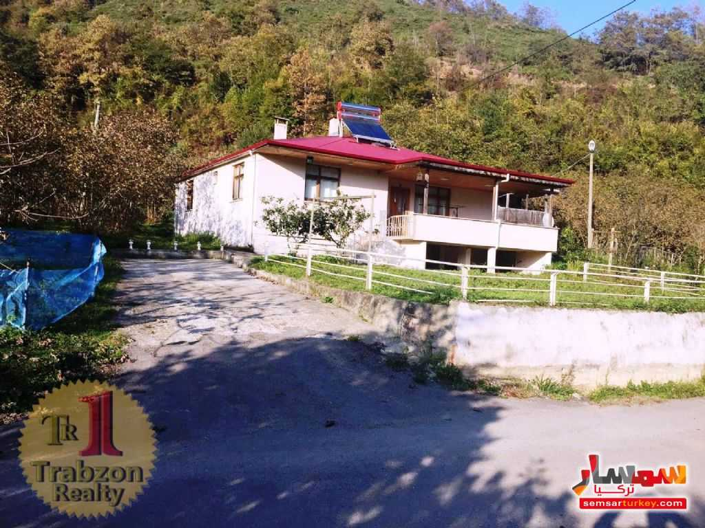 Photo 3 - Farm 5,000 sqm For Sale maçka Trabzon