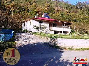 Farm 5,000 sqm For Sale maçka Trabzon - 3