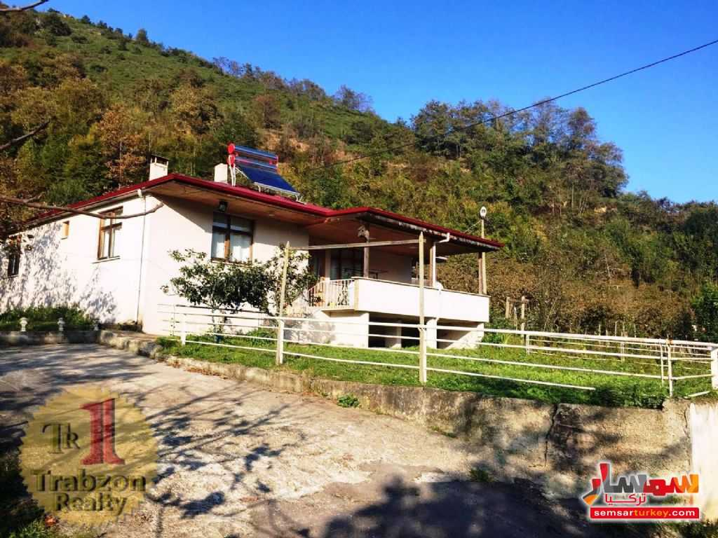 Photo 4 - Farm 5,000 sqm For Sale yomra Trabzon