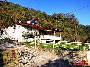 Farm 5,000 sqm For Sale maçka Trabzon - 4