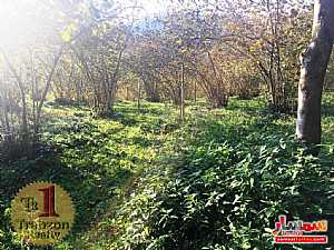 Farm 5,000 sqm For Sale maçka Trabzon - 5