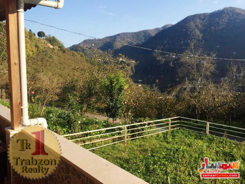 Photo 6 - Farm 5,000 sqm For Sale yomra Trabzon