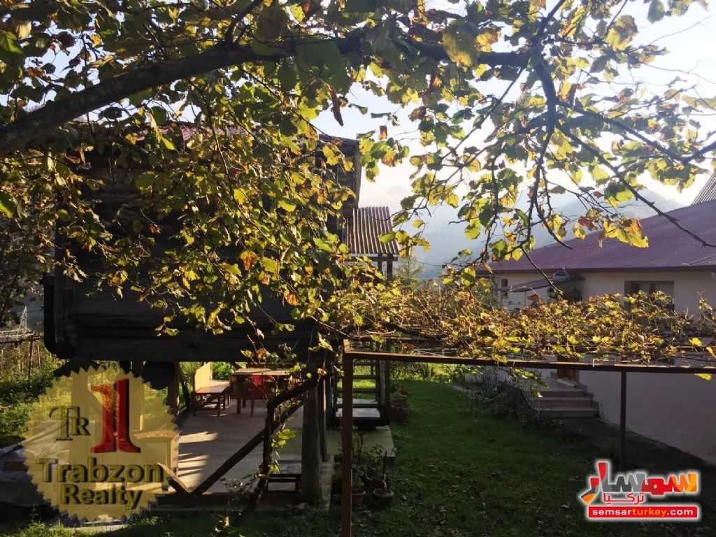 Photo 7 - Farm 5,000 sqm For Sale maçka Trabzon