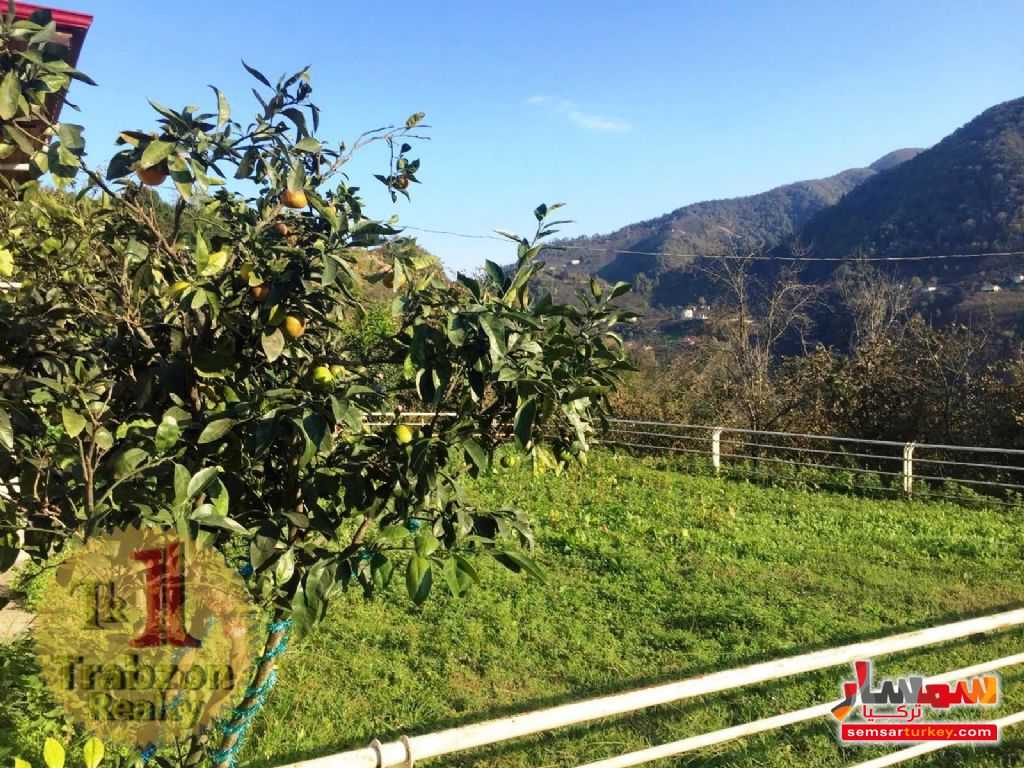 Photo 9 - Farm 5,000 sqm For Sale maçka Trabzon