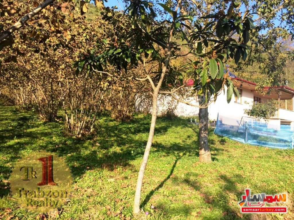 Photo 10 - Farm 5,000 sqm For Sale maçka Trabzon