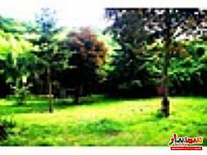 Ad Photo: Land 7600 sqm in Shile  Istanbul