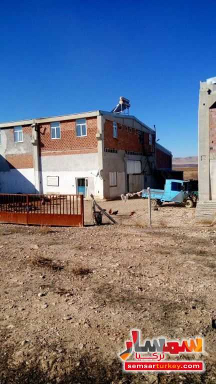 Photo 3 - Farm 29350 sqm For Sale yeshilyurt Malatya