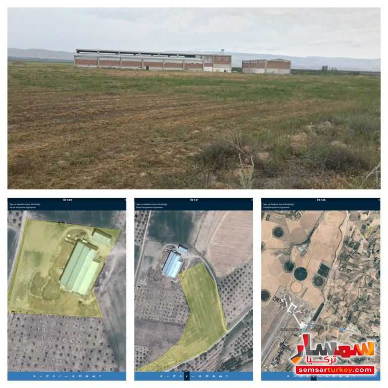 Photo 4 - Farm 29350 sqm For Sale yeshilyurt Malatya