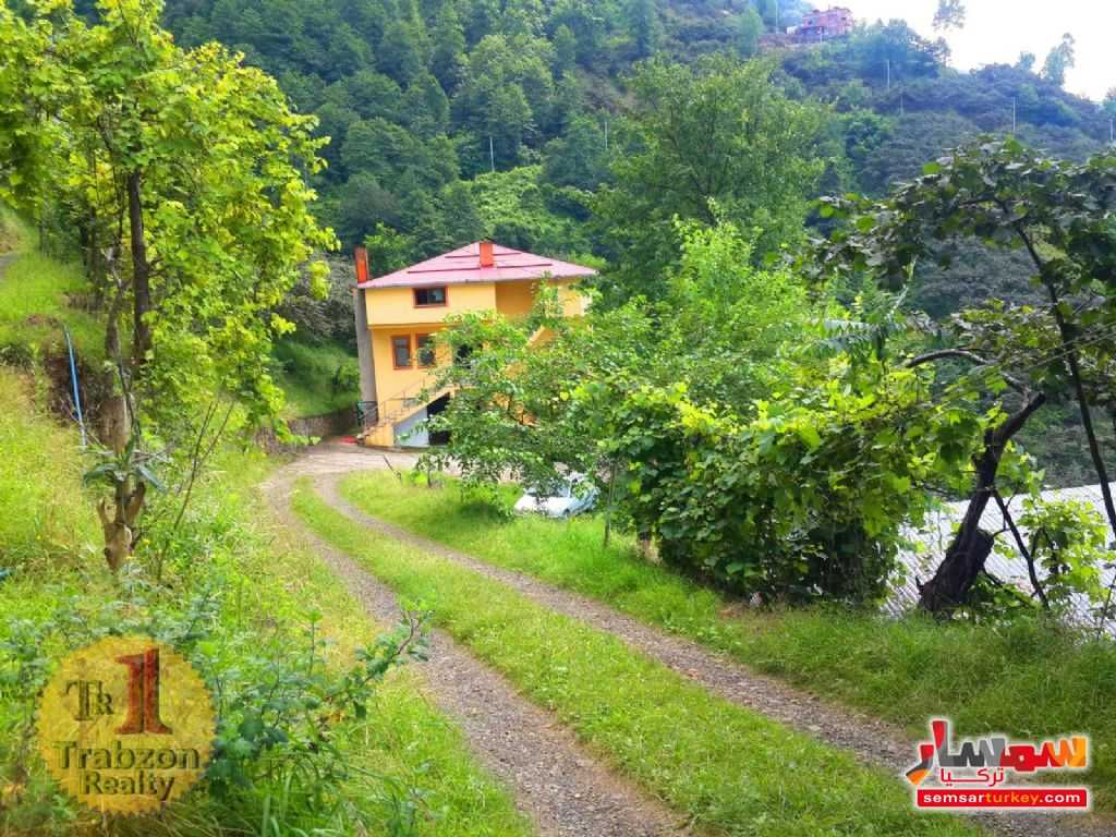Ad Photo: Farm 24000 sqm in Trabzon