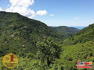 Farm 17,500 sqm For Sale yomra Trabzon - 5
