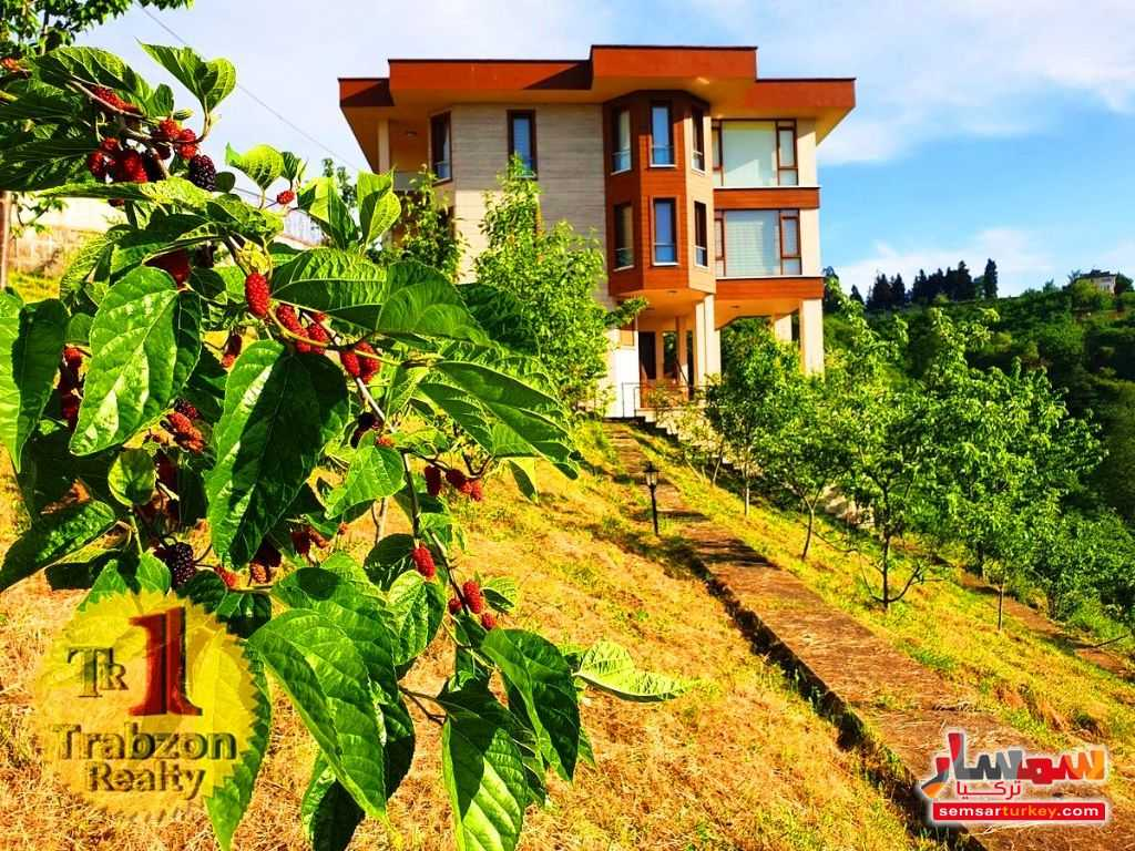 Ad Photo: Farm 5000 sqm in yomra Trabzon