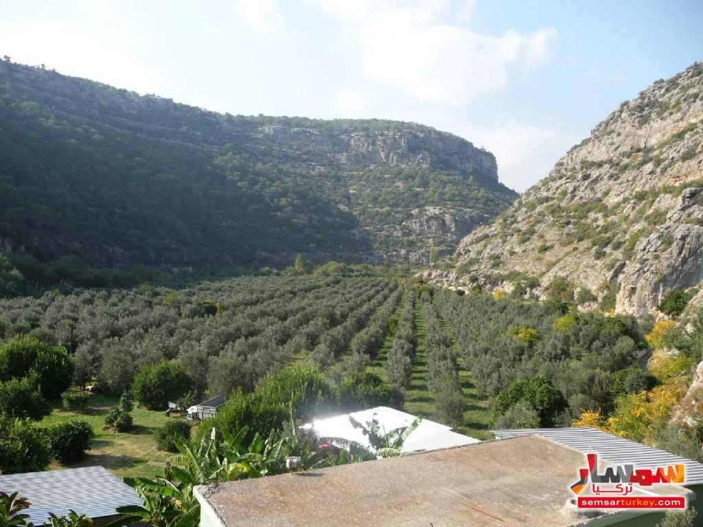 Photo 2 - Farm 50 acre For Sale erdemli Mersin