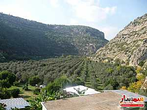 Farm 50 acre For Sale erdemli Mersin - 2