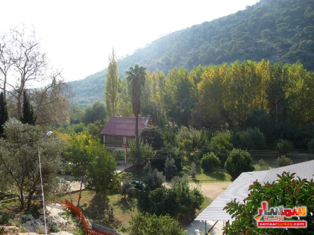 Photo 9 - Farm 50 acre For Sale erdemli Mersin
