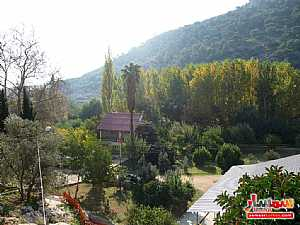 Farm 50 acre For Sale erdemli Mersin - 9