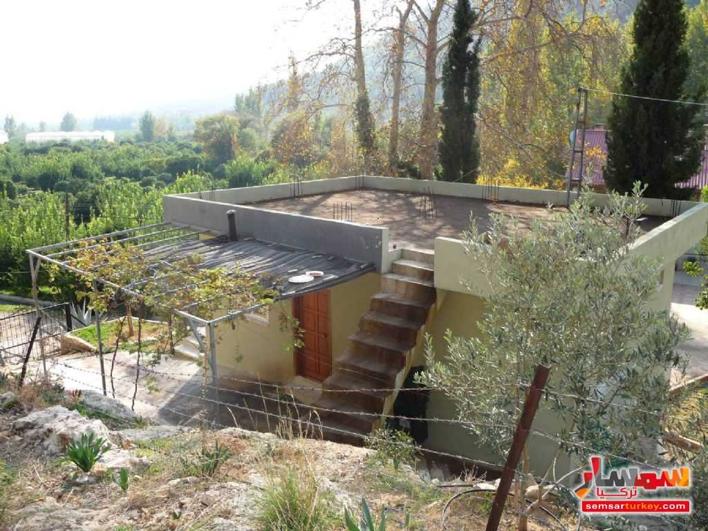 Photo 10 - Farm 50 acre For Sale erdemli Mersin