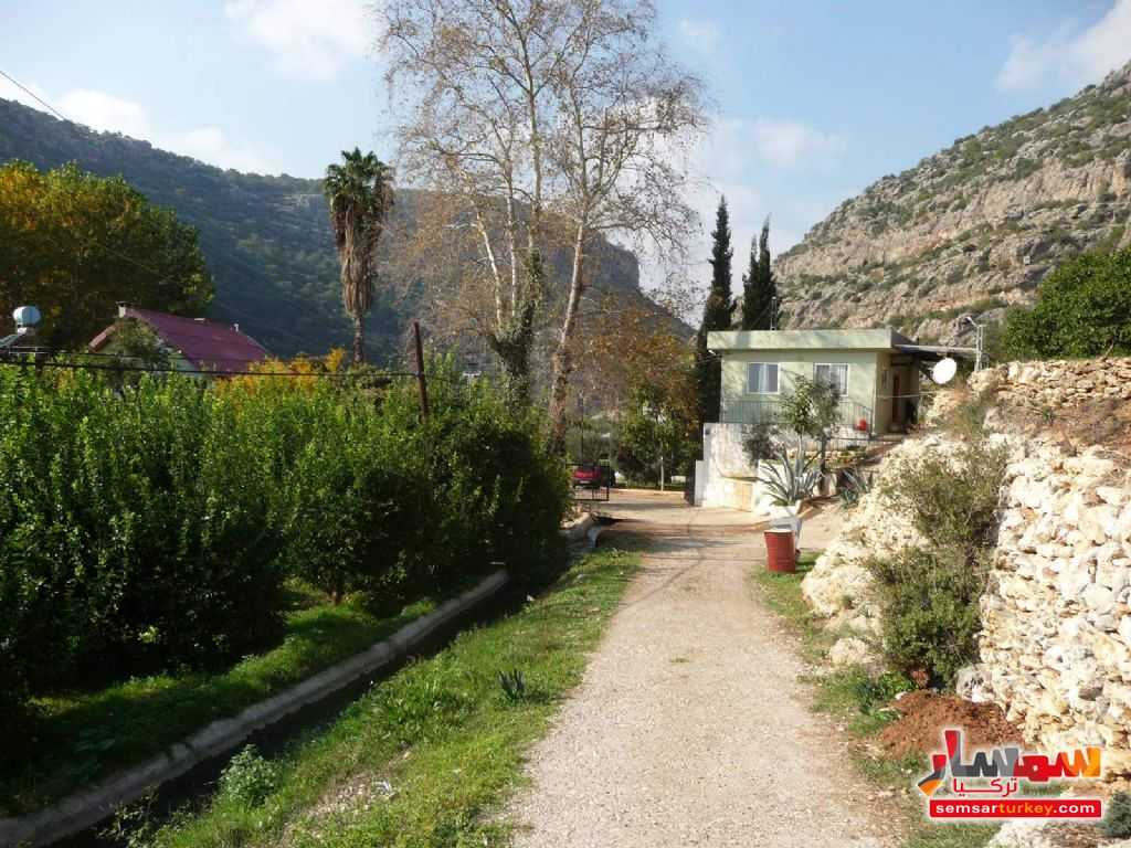 Photo 11 - Farm 50 acre For Sale erdemli Mersin