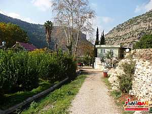 Farm 50 acre For Sale erdemli Mersin - 11