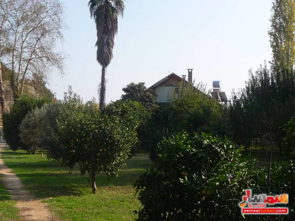 Photo 12 - Farm 50 acre For Sale erdemli Mersin