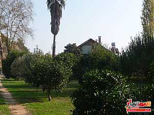 Farm 50 acre For Sale erdemli Mersin - 12