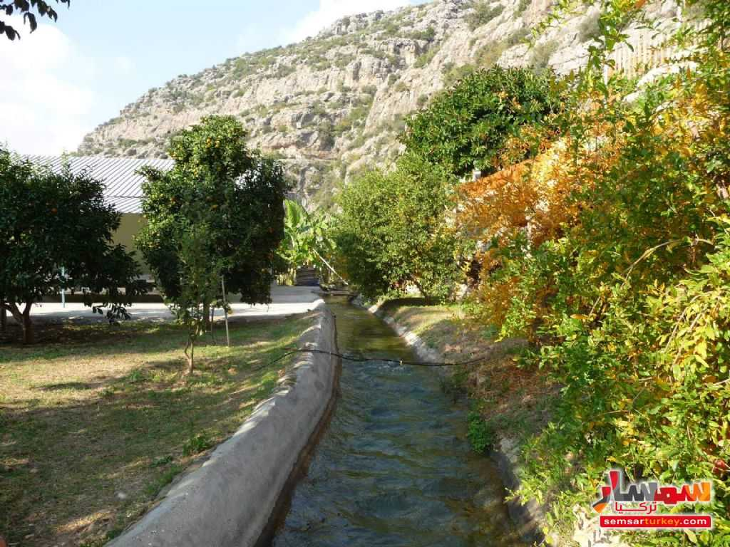 Photo 13 - Farm 50 acre For Sale erdemli Mersin