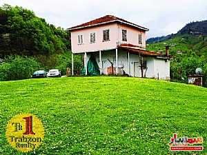 Ad Photo: Farm 26000 sqm in Trabzon