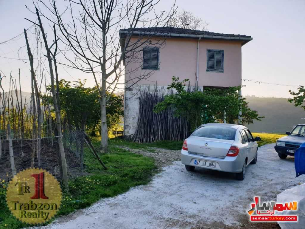 Photo 5 - Farm 26,000 sqm For Sale yomra Trabzon